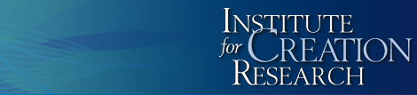 Institute for